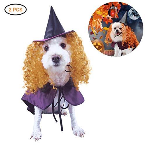 Forhome, grappig, schattig, kat, party, kleding, heks, kostuum, Halloween, speelgoed, kostuum, incl. hoed, omhang, bekleding, M