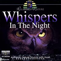 Whispers In The Night by Andr?s Roca