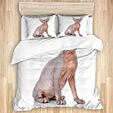 PANILUR Juegos de Ropa de Cama de 3 Piezas Breed Sphynx Bald Cat Sphinx Naked Wildlife Purebred Nature Hairless Canadian Cute Domestic Feline Quilt Cover with Pillowcase Cover Soft Comfortable,Single