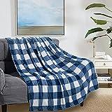 Flannel Blanket Nap Blanket for Couch Buffalo Plaid Check Gingham Velvet Plush Bed Blanket Flannel Fleece All Season Lightweight Blanket, Blue and White, 50'x60'