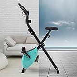 Lazyspace X-Bike Bicicleta estática magnética plegable con asiento acolchado y consola LCD, bicicleta estacionaria interior para el gimnasio cardiovascular (azul)