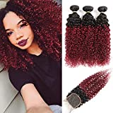 Ombre Burgundy Brazilian Curly Hair 3 Bundles with Closure, Dark Red Two Tone Curly Weave Human Hair Extensions, 99j Afro Kinki Curl Hair Weaving (12'14'16'+Closure10')