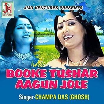 Booke Tushar Aagun Jole (Bengali)