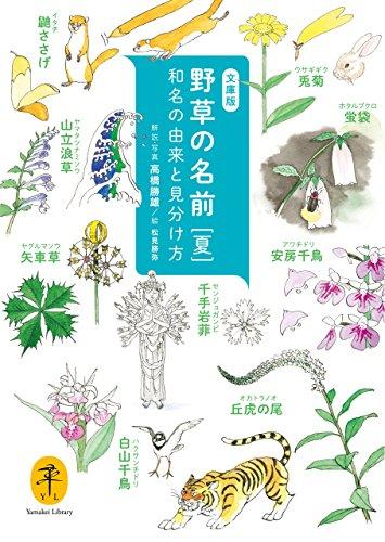 ヤマケイ文庫 野草の名前 夏の詳細を見る