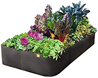 Victory 8 Raised Garden Bed 3 ft X 6 ft
