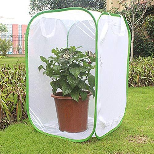 lona alquitranada Carpa de Invernadero Jardín Pequeño Plegable con Puerta, Cubierta de Malla Transparente de Plástico para Huertos, Cubierta Vegetal, 60×60×90cm (Color : White)