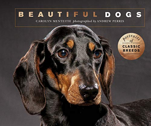 Beautiful Dogs: Portraits of champion breeds (Beautiful Animals)