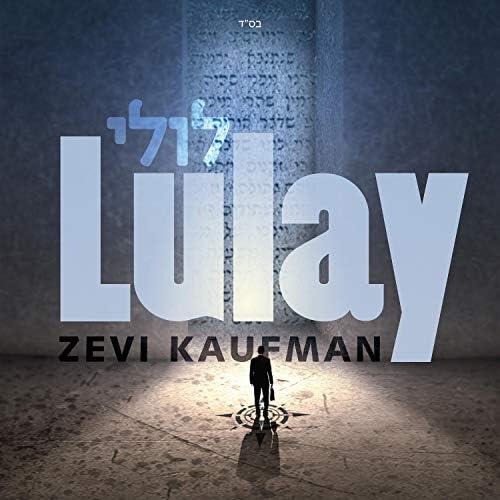 Zevi Kaufman