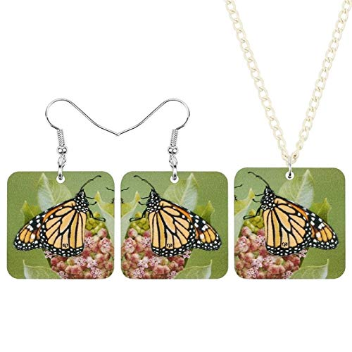 Jskdzfy Conjunto de joyas de acrílico cuadrado con forma de mariposa y flores, collar de insectos para mujeres, señoras y niños (color: multicolor)