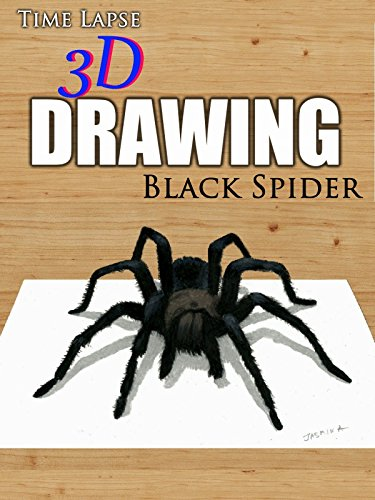 Clip: Time Lapse 3D Drawing: Black Spider