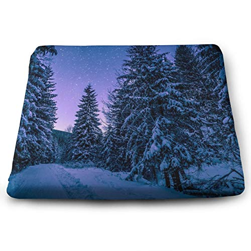 Memory Foam Pads Chair Cushion,Best Forest Night Soft Thicken Seat Pads with Cushion Cover,Cushion Pillow for Office & Home