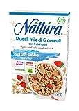 Nattura Muesli Mezcla orgánica de 6 cereales con frutos rojos sin levadura y sin aceite de palma - 1 x 300 gramos