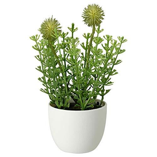 IKEA - Planta artificial con maceta, interior y exterior, 6 cm