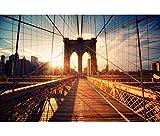 Black Temptation Patrón de Puente de Brooklyn niños Puzzle de 1000 Piezas