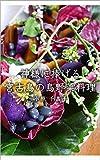 Island vegetable dish for god (Japanese Edition)