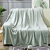 BEAUTEX Fleece Blanket Twin Size Super Soft Flannel Throw Blanket Lightweight Fuzzy Plush Blanket for Couch Sofa or Bed All Seasons (Mint, 60' x 80')
