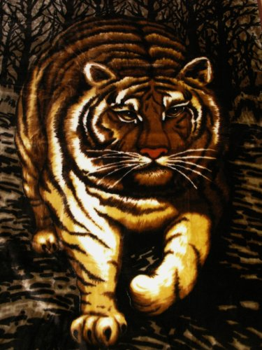 Natur-Fell-Shop Kuscheldecke Tagesdecke Decke Motiv Tiger 160x200cm