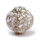 ZJSXIA 2pcs Tortuga Natural Abalone Shell Charms Colgantes Madre Pearl Shell Colgantes for joyería Haciendo Adornos Caracoles de mar