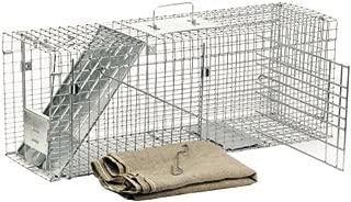 havahart cat trap