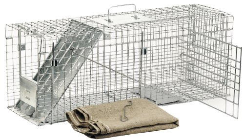Havahart Trampa Jaula Estilo Profesional 1099 Grande 1-Puerta para Animales molestos.