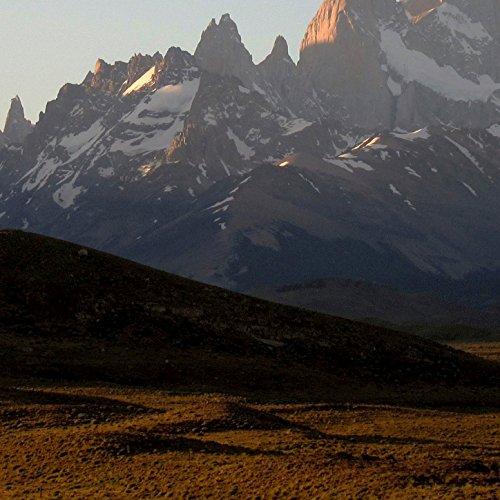 Patagonian Plain