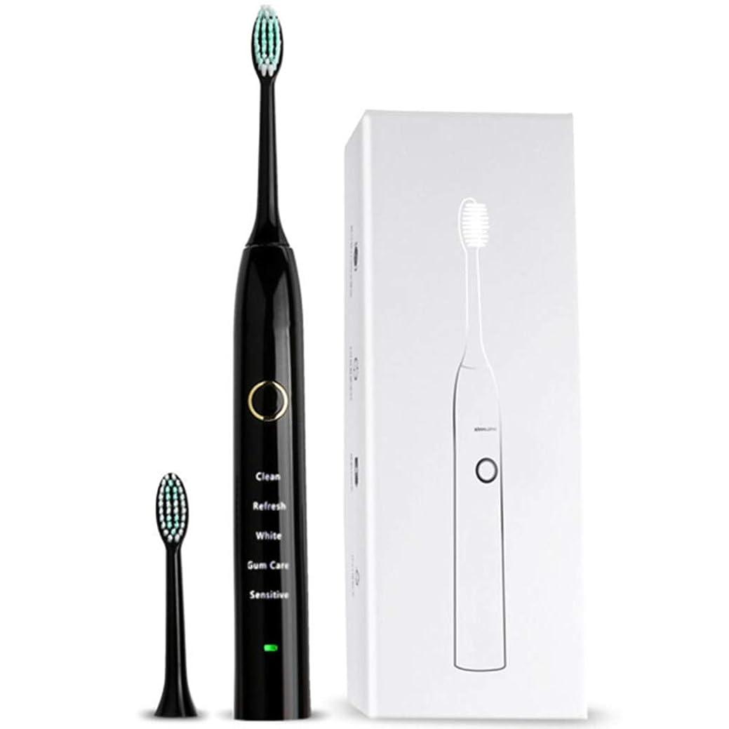 首尾一貫した紳士承認する電気充電式歯ブラシ、5モード、デュポン?ソフト?ブラシ、IPX68防水、USB充電、低騒音、2分スマート?タイミング、30秒間のゾーンリマインダ、大人のための女性と男性
