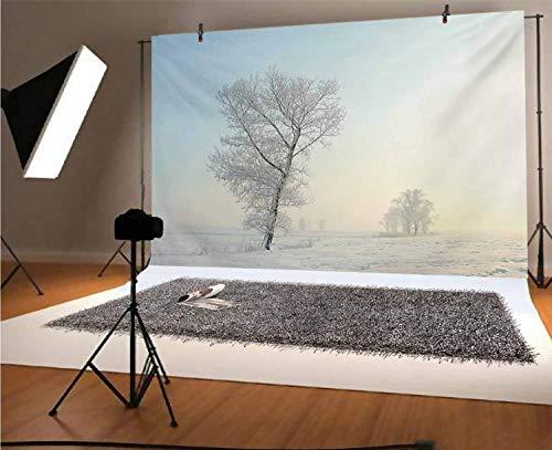 Fondo de vinilo para fotos de invierno de 7 x 5 pies, árbol congelado en soleado invierno amanecer sol paisaje tierra desierta fondo para niños baby shower Photo Studio Prop Photobooth Photoshoot