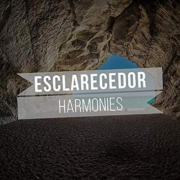 Esclarecedor Harmonies, Vol. 1