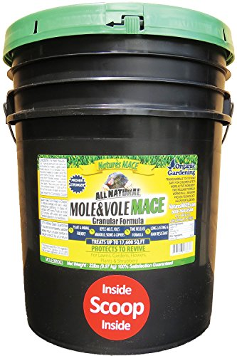 Nature's Mace Mole & Vole Repellent 22lb Granular/Covers 17,600 Sq. Ft. / Keep Moles & Voles Out of Your Lawn and Garden/Guaranteed to Repel Moles/Safe to use Around Home, Children, & Plants