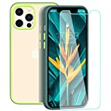 zelaxy Case Compatible with iPhone 12 /iPhone 12 Pro with Screen Protector, Protective Anti-Yellow Clear Transparent Case with Colorful Bumper for iPhone 12 /iPhone 12 Pro 6.1 inch (Gray Yellow)