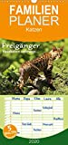 Freigänger - Hauskatzen unterwegs - Familienplaner hoch (Wandkalender 2020 , 21 cm x 45 cm, hoch): Hauskatzen in freier Natur (Monatskalender, 14 Seiten ) (CALVENDO Tiere)