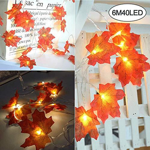 Zorara Ahornblatt-Lichterketten, 6M40 LED-Lichterketten aus Ahorn, Dekorativer Herbst, Thanksgiving-Dekoration und Weihnachtsbeleuchtung (warmweiß) (Weiß)