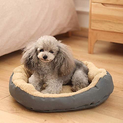 Hexiao Perro Gato Cama del Gato de la Perrera Nido Oso de Peluche Golden Retriever Gato Estera Nido pequeño Perro Temporada Fuentes del Perro Cama del Perro XL xiao1230 (Color : Grey, Size : XL)