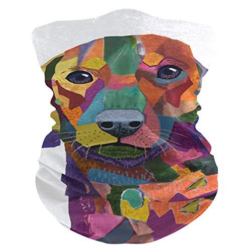 LORONA - Pasamontañas para perro salchicha con impresión de retrato de perro salchicha, pasamontañas para el cuello, polainas para hombres y mujeres