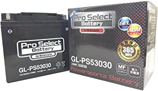 Pro Select Battery (プロセレクトバッテリー) GL-PS53030 【53030 Y60N24AL-B互換】 BMW対応 液入充電済MFジェルバッテリー 安心信頼業界最長2年保証付き 長持ち バイクバッテリー すぐ使えるメン...
