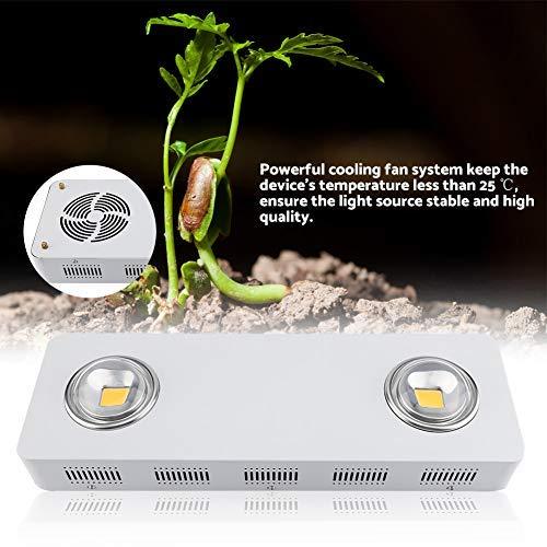 Grow Light Full Spectrum LED plantenlamp lentelicht tot 200W COB licht voor planten groenten fruit in serra/Grow Box/tuin