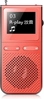WERHA 40GB MP3 Player, Portable Digital Lossless Music Player with FM Radio, Line- in Burn Music, The Recordings, E-Book, ...