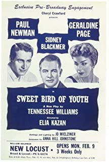 Incline Wholesale Posters Sweet Bird of Youth Poster Broadway Theater Play 11x17
