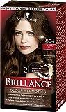 Brillance Gloss Hypnotics Coloration Stufe 3 884 Kakaobraun, unwiderstehliche Farbintensität für bis zu 9 Wochen, 3er Pack(3 x 165 ml) BI884