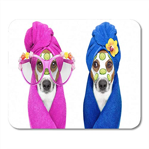 Gaming Mouse Pad Jack Russell Paar Hunde Entspannende Schönheitsmaske im Spa Wellness Center Feuchtigkeitscreme und Gurke Rechteck Mausmatte Rutschfeste Gummibasis MousePads
