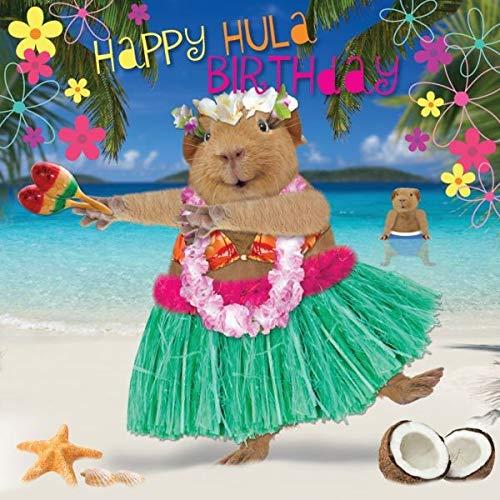 Quay Side Cards verjaardagskaart cavia-dansen onder de tropen
