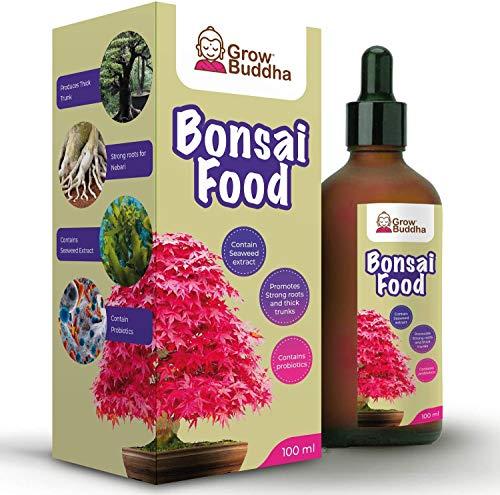 Bonsai Food Fertilizzante per Bonsai - Fertilizzante liquido concentrato per Bonsai 100 ml - Crescita rapida con radice forte - Adatto a tutti i Bonsai e piante