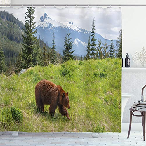 ABAKUHAUS Oso Cortina de Baño, Pieles de Animales Naturaleza Hábitat, Material Resistente al Agua Durable Estampa Digital, 175 x 200 cm, Verde marrón