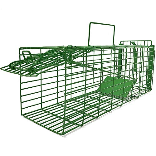 Kat Sense Humane Large Rat Trap Cage Traps for Squirrels Weasels amp Small Animals Live Catch amp Release 2 Door Trap That Works Outdoor _ Indoor