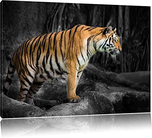 BSLIAO Mural tijger poster op zoek naar voedsel, muurschildering bedrukte woonkamer foto, wanddecoratie kunst beeldfotografie, abstract—tijger poster