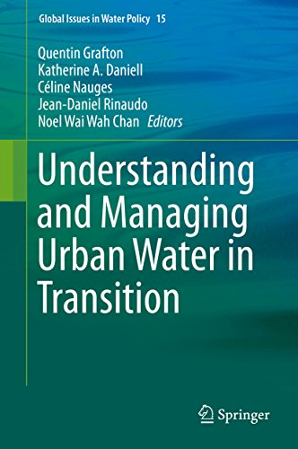 Understanding and Managing Urban Water in Transition (Global Issues in Water Policy Book 15) (English Edition)