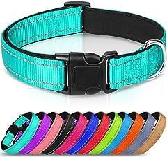 Joytale Collar Perro Reflectante,Nylon Collar Acolchado con Neopreno,Ajustable para Perros Mediano,35-50cm,Verde Azulado