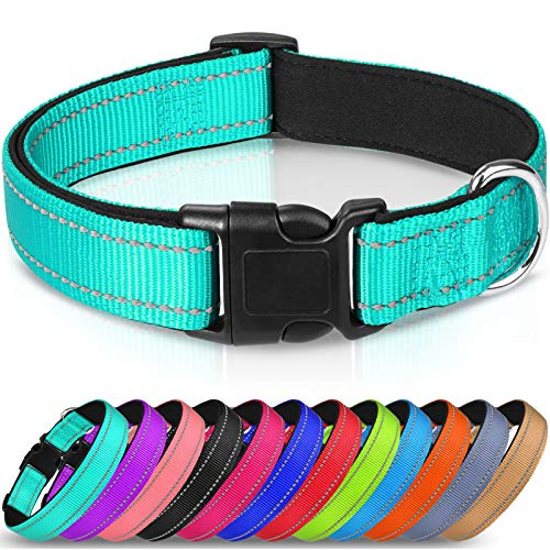 Best Reflective Dog Collar