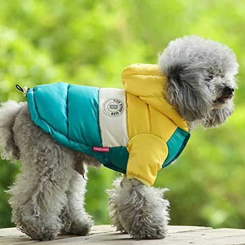 BeesClover Warme Winter-Kapuzenjacke für kleine Hunde, Zwergspitz, Teddy, Gelb, Größe 42