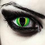 Grüne farbige Drachenaugen Katzenaugen Kontaktlinsen für Halloween Kostüm Model:'Green Dragon' + gratis Kontaktlinsenbehälter